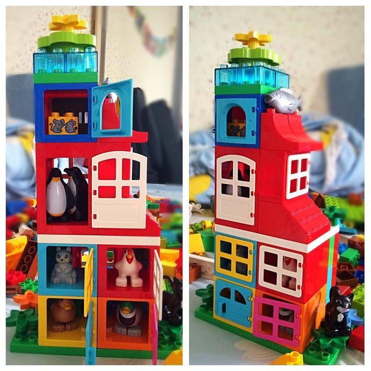 Каждой зверушке- по комнатушке #лего #легодупло #легоминифигурка #легомир #леголенд #леголэнд #lego #legocity #legoduplo #legomania #legostagram #legogram #legofoto #legominifigures #game #toy by medicus85