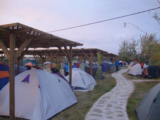 Dolphin Camping in Sfantu Gheorghe, Danube Delta