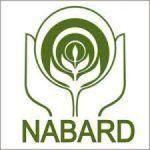 NABARD Grade A, B Admit Card 2017