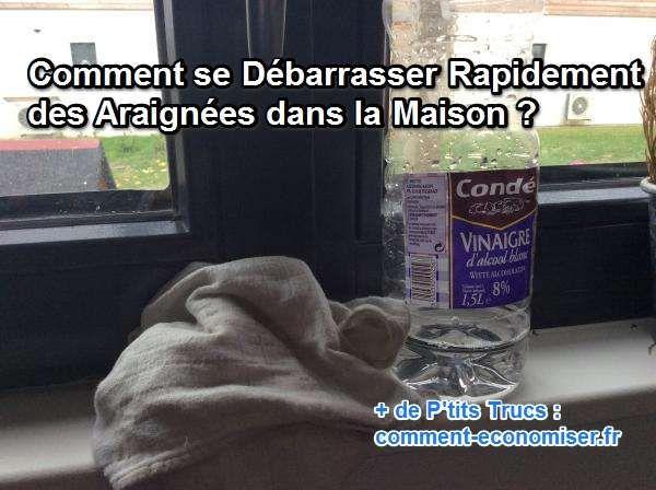 Pour mettre en place une ligne de défense anti-araignées, il suffit d'utiliser un vieux chiffon et une bouteille de vinaigre blanc.  Découvrez l'astuce ici : http://www.comment-economiser.fr/comment-se-debarrasser-des-araignees-dans-la-maiso.html?utm_content=bufferb478a&utm_medium=social&utm_source=pinterest.com&utm_campaign=buffer