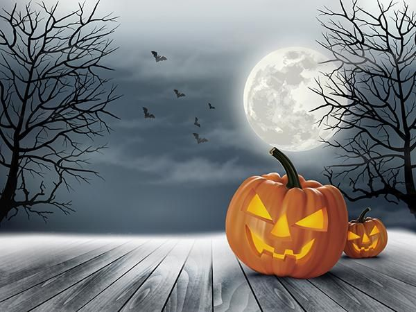Kate Halloween Backdrop For Photos Wood Floor Moon Background Halloween Backdrop Spooky Background Halloween Backgrounds