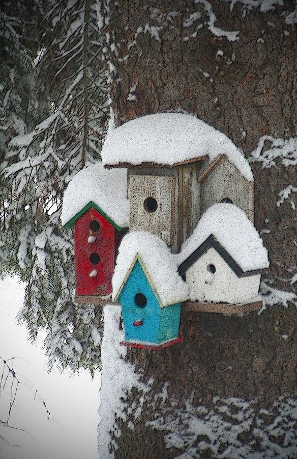 Winter birdhouses the roof shelters and snow for Different bird houses