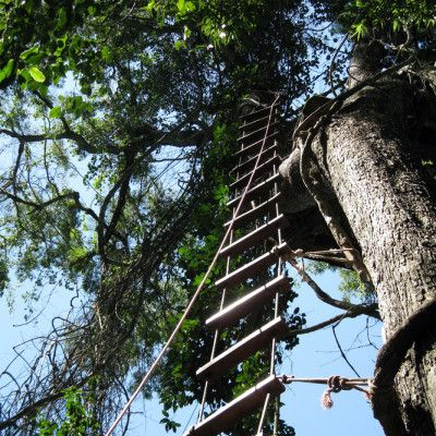 Canopy Tour Iguazu National Park:   Camp de Desafios. Interpreted to mean The Field of Challenges, Camp de Desafios offers guests the opportunity for repelling, canopy walking, rafting, and climbing.