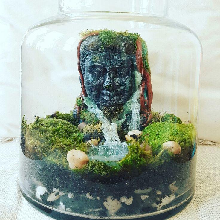 Buddha terrarium