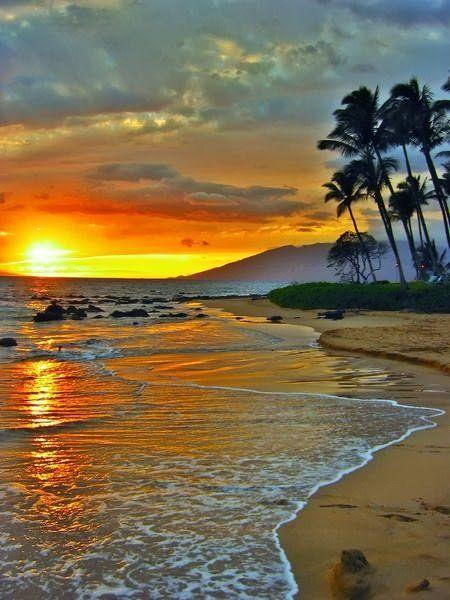 tropical sunset.