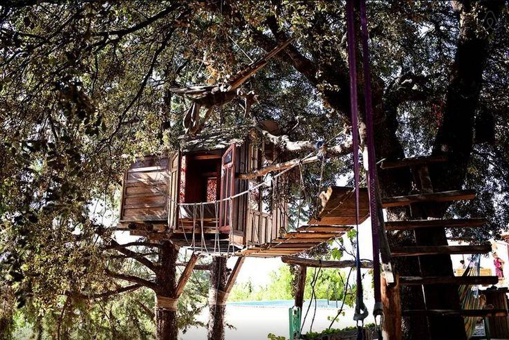 Att bo i en trädkoja är kanske inte riktigt för alla. Men för den som har barnasinnet i behåll finns även det alternativet på Airbnb.