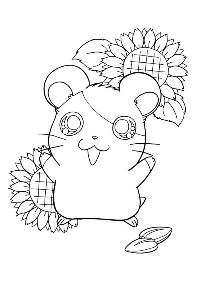 Cute Kawaii Hamster Coloring Pages Animal Coloring Pages Cute Hamsters Hamster Species