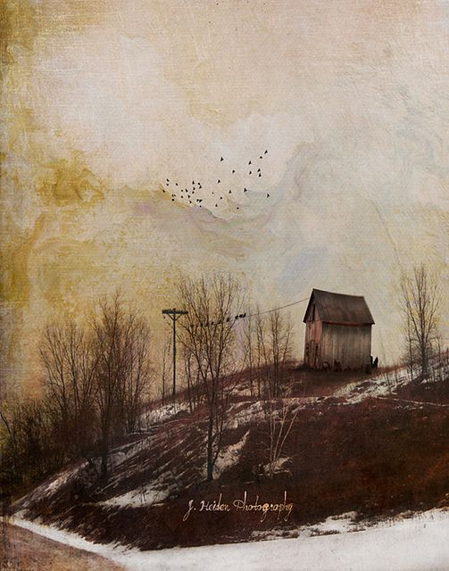 The 44th Spring by jamie heiden, via Flickr:
