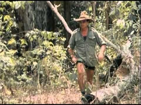 Bush Tucker Man  ... Todays episode is Aurukun and is about the wild and desolate West Coast of Cape York at the most northern tip of Australia. We hope you and your kids find this as fascinating as we did.    You've heard about the Magic of Australia. Now learn about the real Australia. Learn about the foods that allowed the Aborigines to survive as they went Walkabout. Travel Australia with The Bush Tucker Man - a living legend - as he shows you the wonders of Outback.