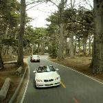 Monterey Trip Planner