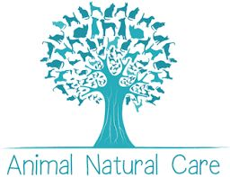 Image result for animal logo australia