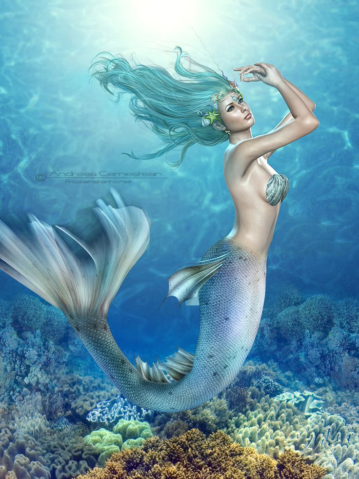 find this pin and more on mermaids and unicorns