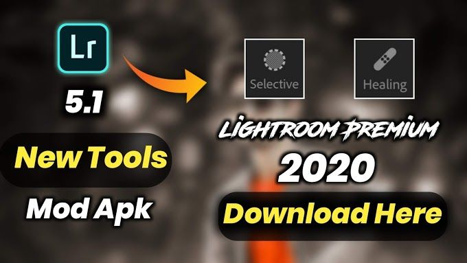 Free Lightroom Presets Mod Apk