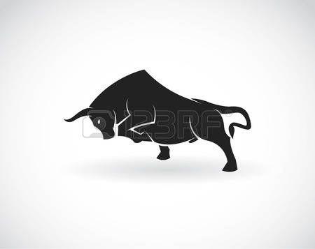 toros bravos: Vector la imagen de un toro sobre un fondo blanco