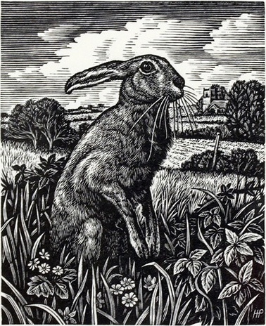 March Hare, wood engraving by Howard Phipps.