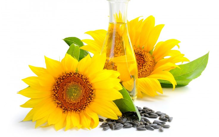 Betul Oil Limited is a leading solvent extraction company in  India.