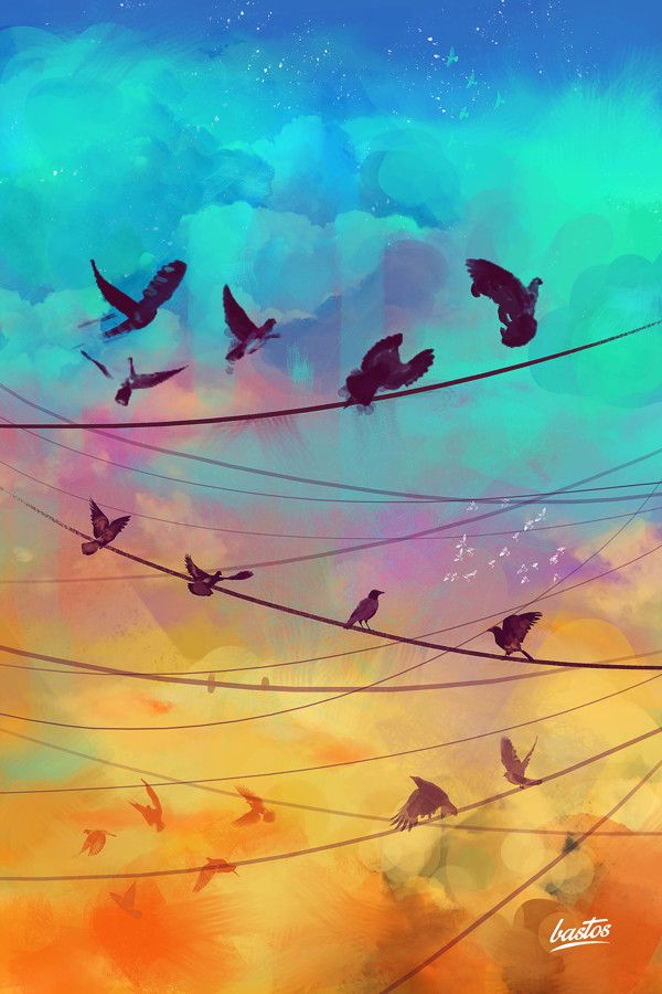 ppposters birds by Marcelo Bastos, via Behance