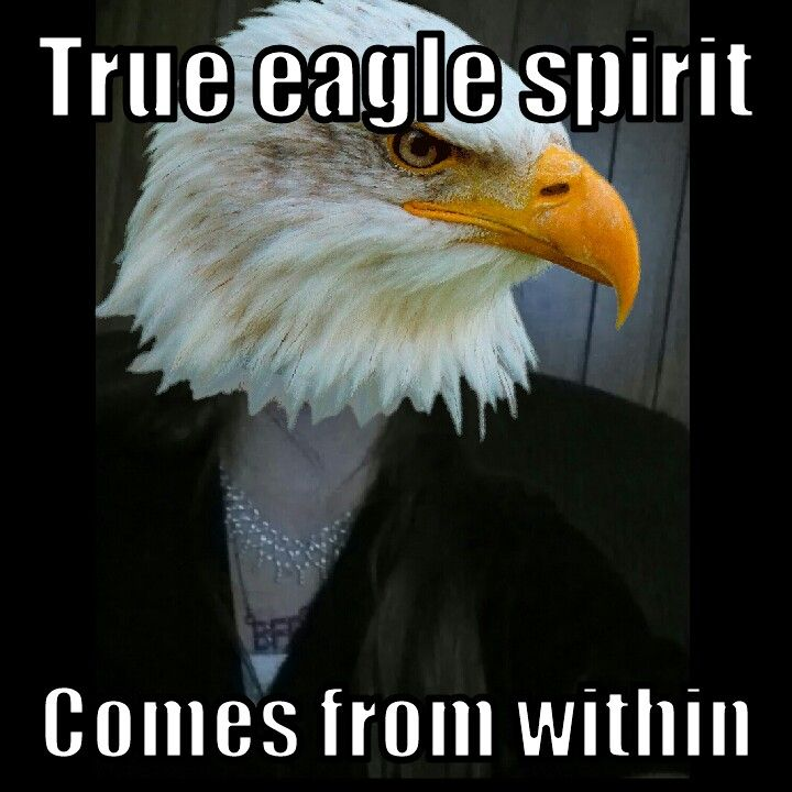 Marion Michigan Eagle spirit comes within