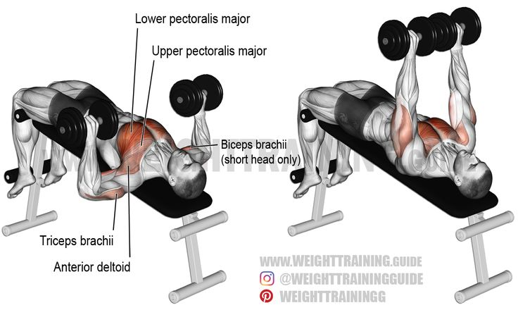 Decline Dumbbell Bench Press Exercise Instructions And