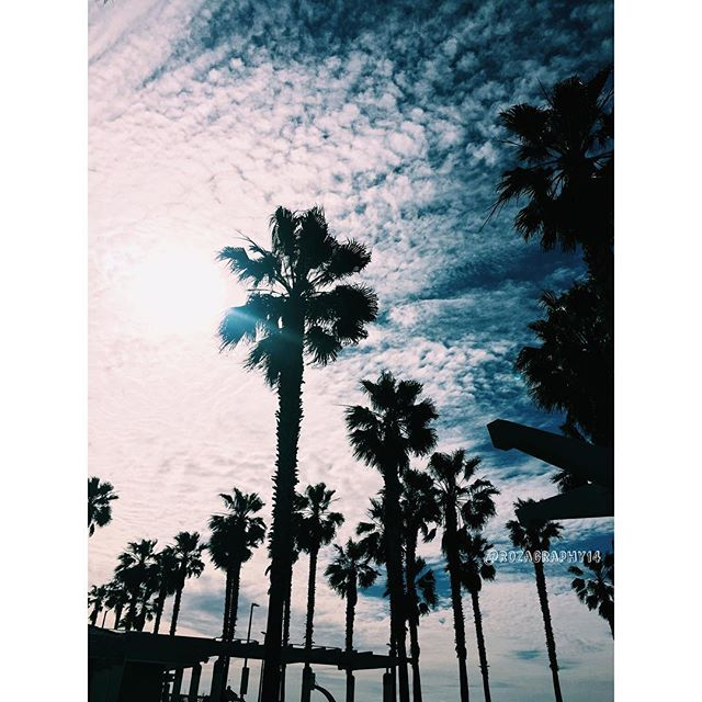 ❤ - - - #photography #fashion #outfits #womansfashion #nail #follow #followme #nailart #naildesign #nails #ootd  #beach #ocean #hashtag #like #likeit #repsost #sandiego #imperialbeach #palmtree #palmtrees #imperialbeachlocals #sandiegoconnection #sdlocals #iblocals - posted by Rozagraphy  https://www.instagram.com/rozagraphy14. See more post on Imperial Beach at http://imperialbeachlocals.com
