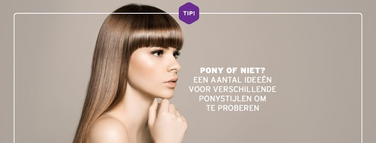 Pony of niet? - Rombout kappers