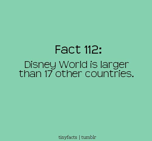 Interesting Fact: Disney World... Disney should just be its own country...