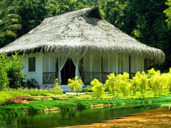 Small House in Dominican Republic Thatched Roof, Nature Pictures, Funny Pictures, Pictures Gallery, Beautiful Places, Beautiful Cottages, House, Nature Beautiful, Small Cottages