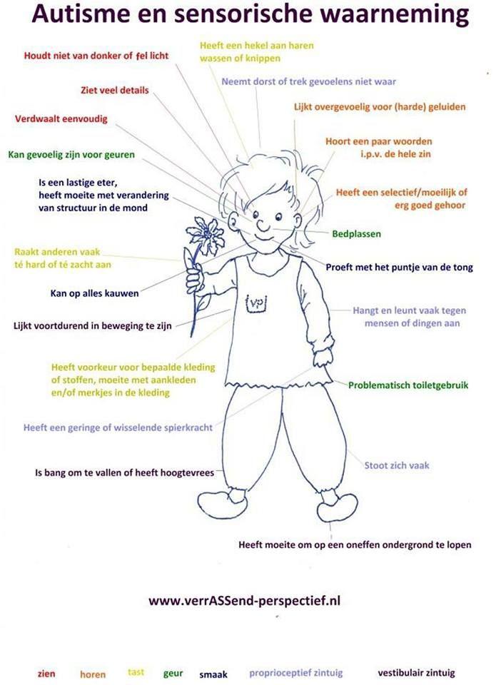 Sensorische informatieverwerking bij autisme