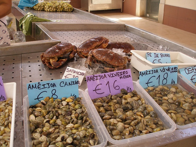Seafood ameijoa ostras loule fish market loule for Fish market prices