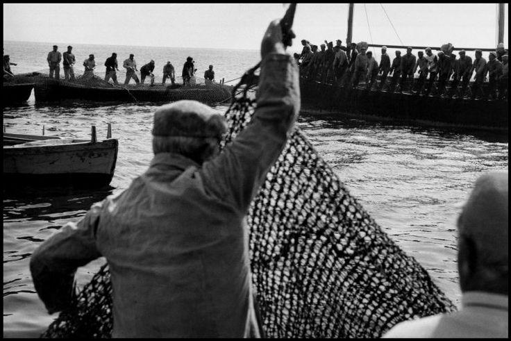 Leonard Freed. ITALY. Sicily. Egadi Island. 1975. Tuna fishing (Matanza).