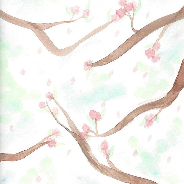 【professional.fxnart】さんのInstagramをピンしています。 《it isn't clique art but i'm trying some more watercolour  listened to the human condition while painting. it's a REALLY good album . . . . . {pointless tags} #watercolour #cherryblossoms #art #painting #lowquality》