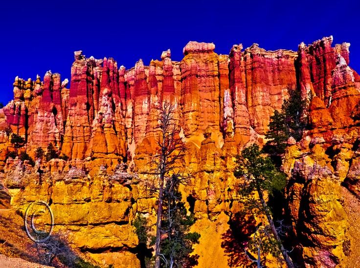 Bryce canyon photography by carrie stiles bryce canyon