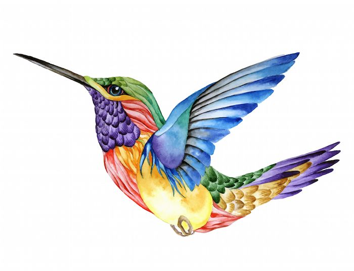 Hummingbird Tattoo Meaning | Tattoos With Meaning
