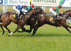 Pukekura Raceway presents Taranaki Racing, the place to go for news, events, track history & records
