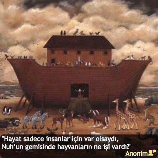 """""""Hayat sadece insanlar için var olsaydı, Nuh'un gemisinde hayvanların ne işi vardı?"""" #Anonim #birsözepikse #özlüsözler #anlamlısözler #güzelsözler #gününsözü #edebiyat #felsefe #siirsokakta #şiirsokakta"""