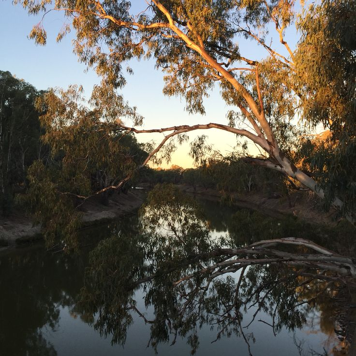 Darling River Bourke NSW-tranquility