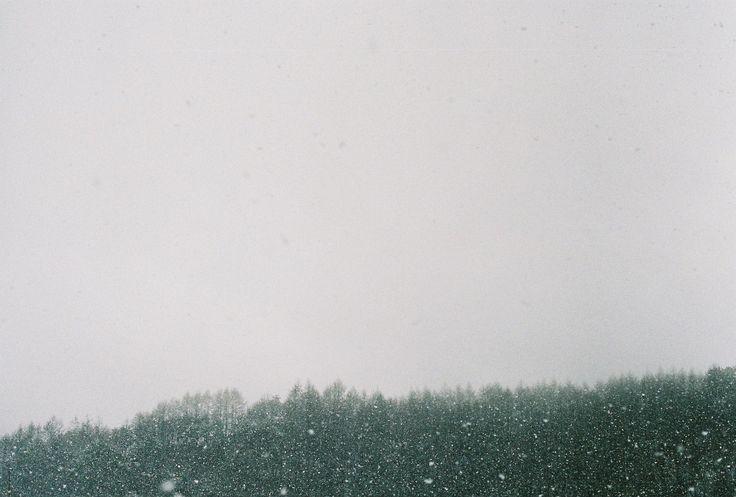 [허공에 말하기 #1.]    겨울의 끝에서, 함박 종이눈