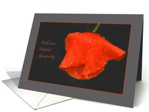 Poppy raindrops red grey - Flowers Deepest Sympathy Condolences card by Steppeland