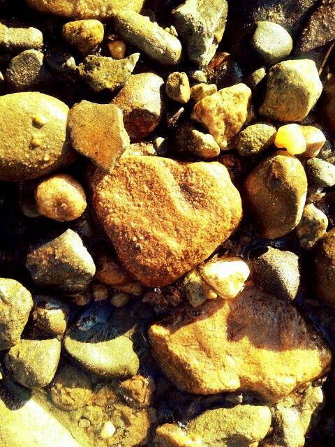 Loving pebble