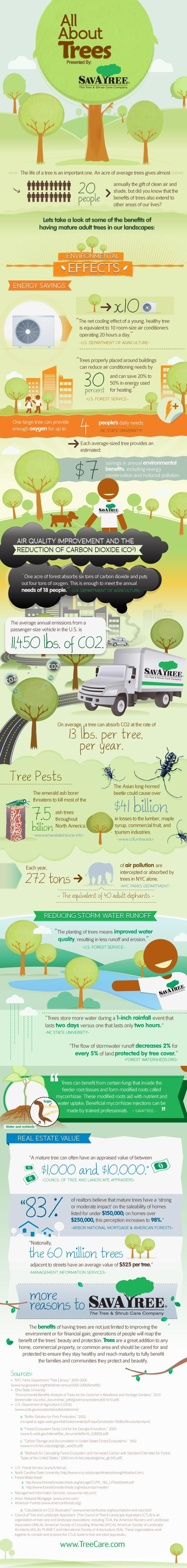 The many benefits of trees!    Click through to see NatGeo's blog post explaining the graphic! (And for a nice big easy to read version!)