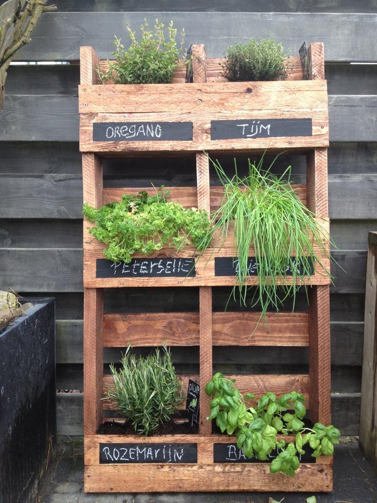 Recycle van pallet tot verticale kruidentuin kruidentuin pinterest pallets and van for Terras decoratie