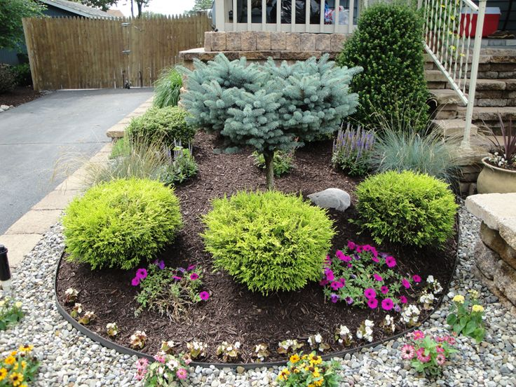 Full Sun Low Maintenance Commercial Flower Bed Zone