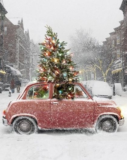 Festive Christmas tree + vintage red car