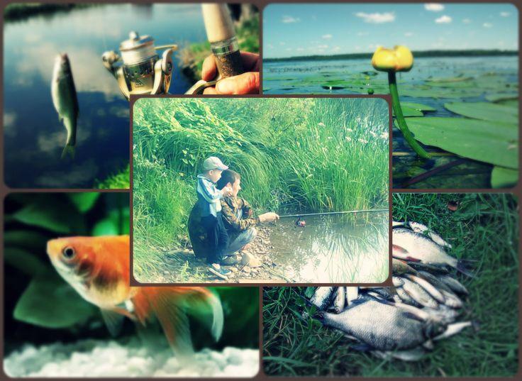 Мой папа – мастерский рыбак!  Ему что окунь, что судак –  Улов всегда отличный,  А рыб он знает лично.  Я наблюдал, как он ловил  И с каждой рыбкой говорил.  Легонько удочкой подсек…  – Ну, здравствуй, здравствуй, карасек!  Потом слегка взмахнул рукой…  – Привет, ершович, дорогой!  Зачем-то отпустил малька…  – Плыви, малыш, расти пока.  И рыбы папу узнают,  А потому всегда клюют. ))) #АннаЗубова #МоиРыбаки