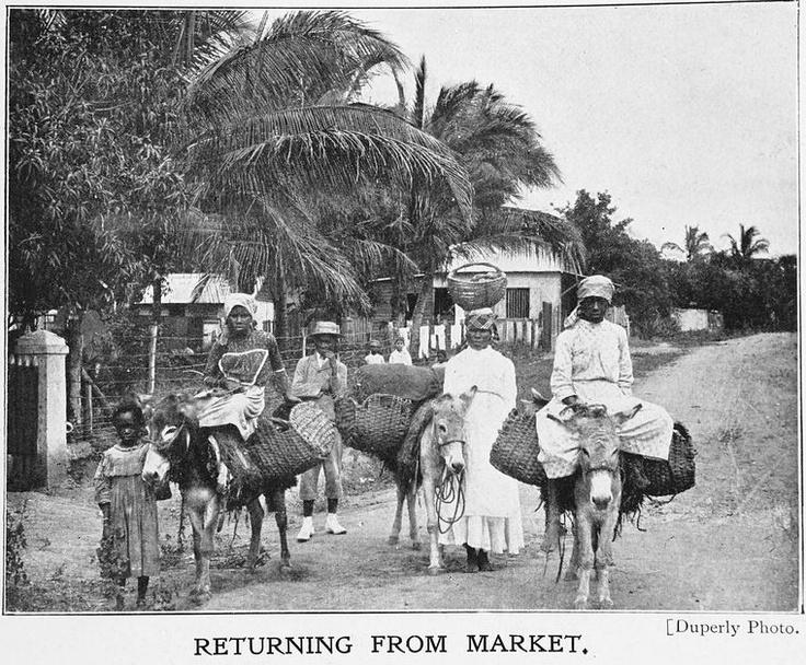 returning to the island paradise of jamaica Returning families edit  cuba, jamaica, puerto rico, and hispaniola  a screenshot of isla paradiso during island paradise development.