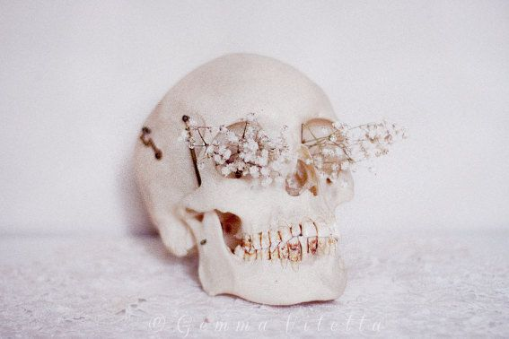 Cráneo I  Skull Photo Macabre Decor Halloween Decor by Camerallure