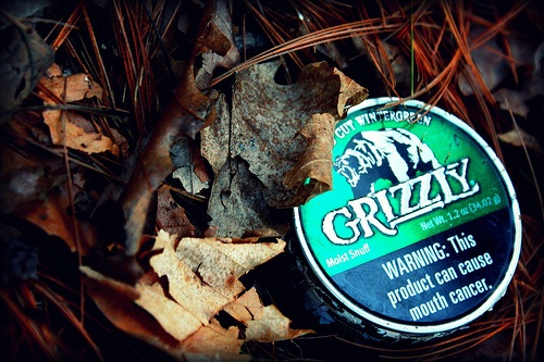 grizzly tobacco