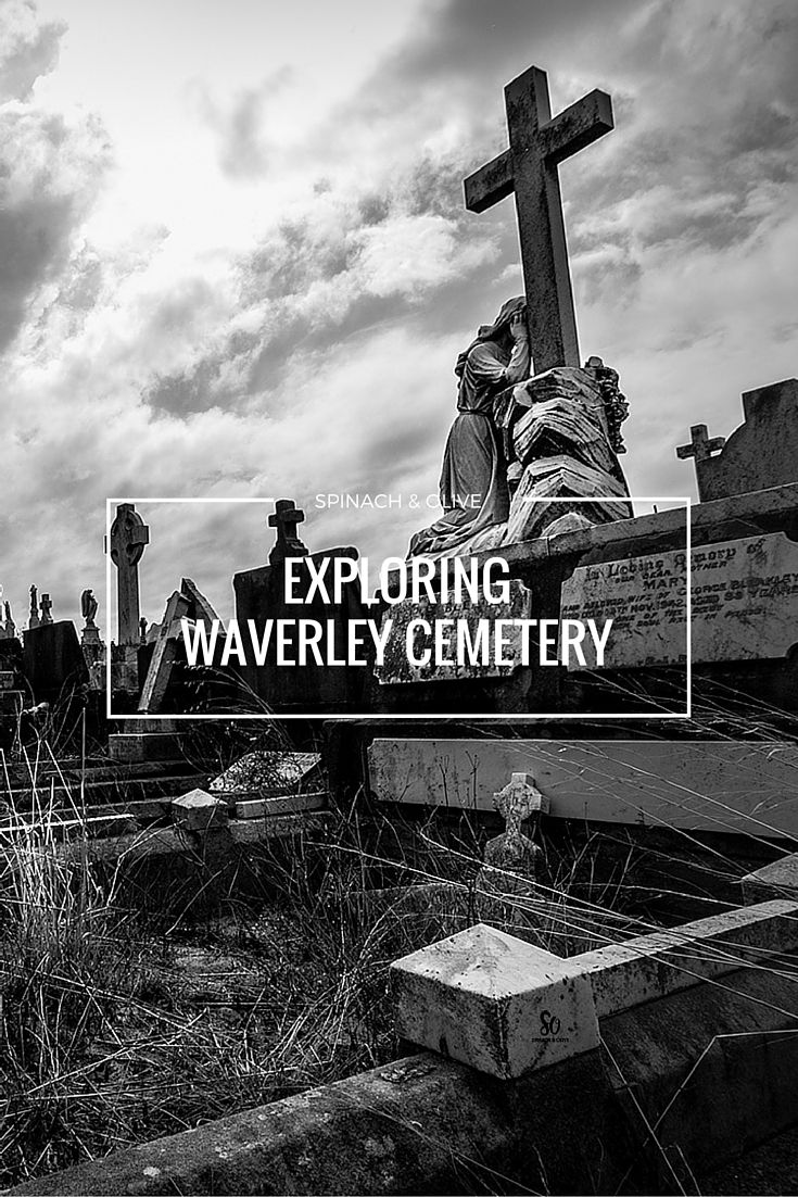 An unusual photography day trip turned out to be one of the best discoveries of the year so far! Find out more | Visit http://spinachandolive.blogspot.com.au/2016/03/exploring-waverley-cemetery.html