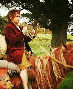 The Hobbit!! I cannot get over how FREAKIN' ADORABLE Martin Freeman is as Bilbo.