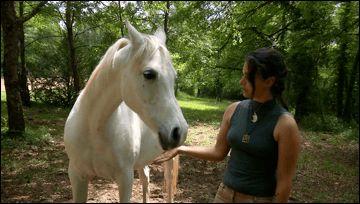 Una storia a lieto fine per il cavallo allergico al fieno Juanita, cavalla araba di 13 anni, ha un insolito problema, almeno per un cavallo: è allergica al fieno. Ma al centro ippico Tashunka di Todi non si sono persi d'animo e hanno risolto il problema  e #animali #allergia